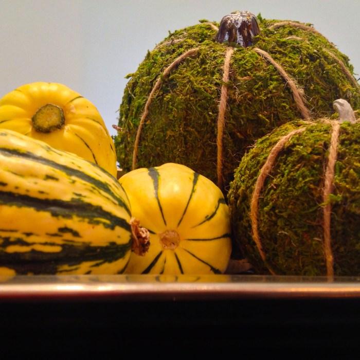 DIY Moss Covered Pumpkins