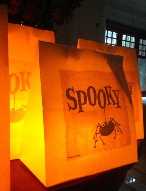 Paper Lanterns - mydearirene