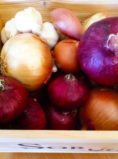 Storing Onions, Garlic, Shallots