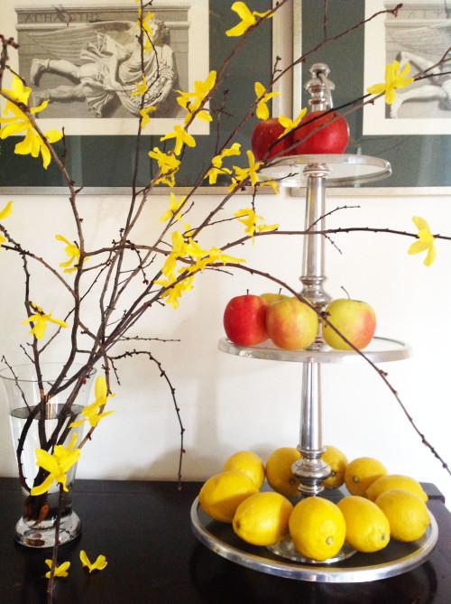 Semi Faux Forsythia Branches - mydearirene
