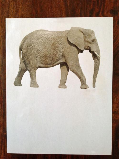 Elephant Printout - mydearirene.com
