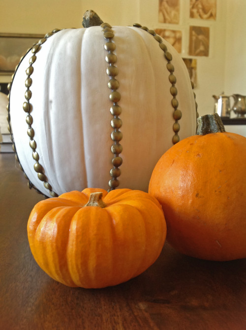Nailhead Trim Pumpkin