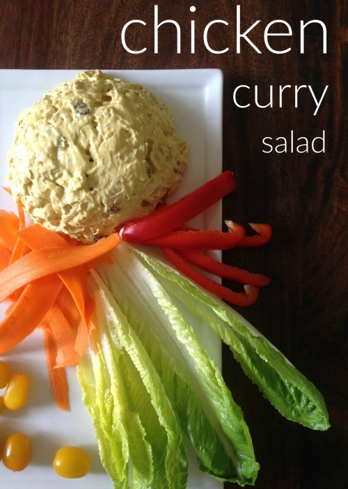 Chicken Curry Salad III - mydearirene.com