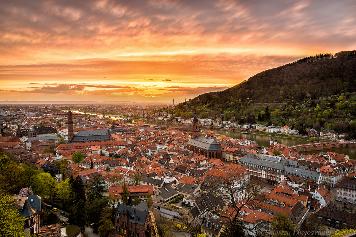 Late Fall Wallpaper Majestic In Ruins Heidelberg Castle A Pakistani In The