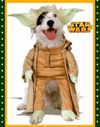 Jedi Master Yoda Star Wars Pet Dog Size Medium Costume | G ...