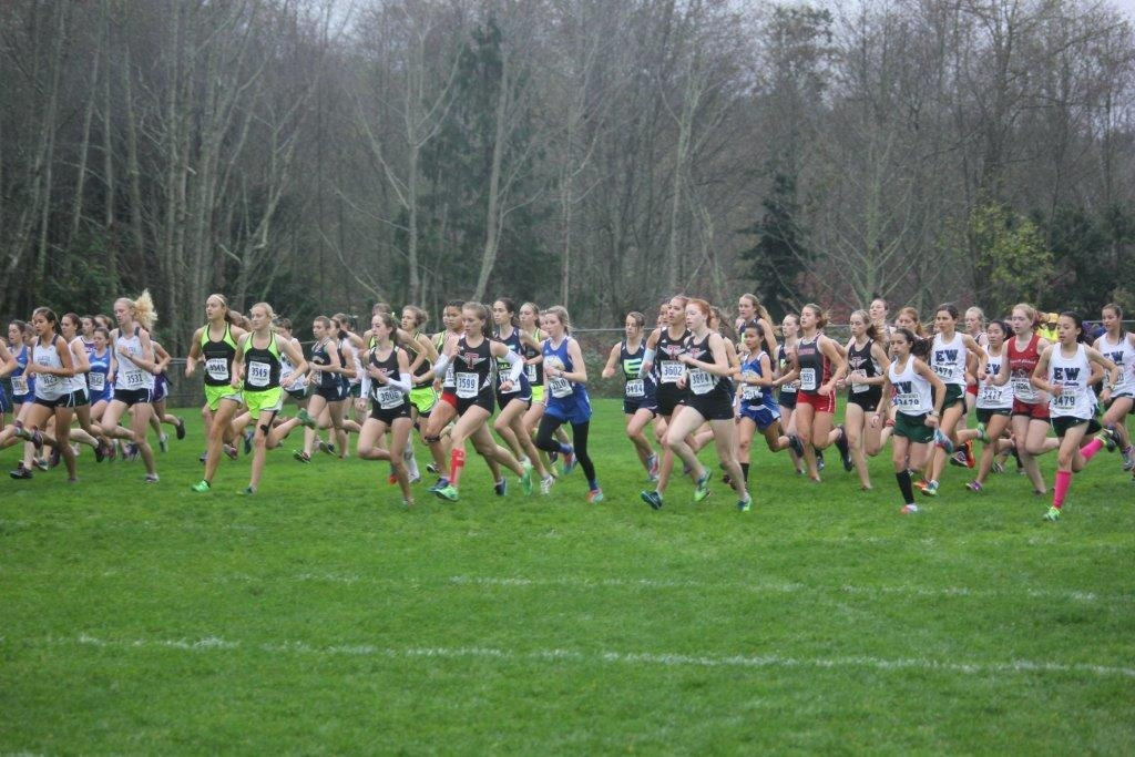 Falcon girls cross country finishes fourth, claims state