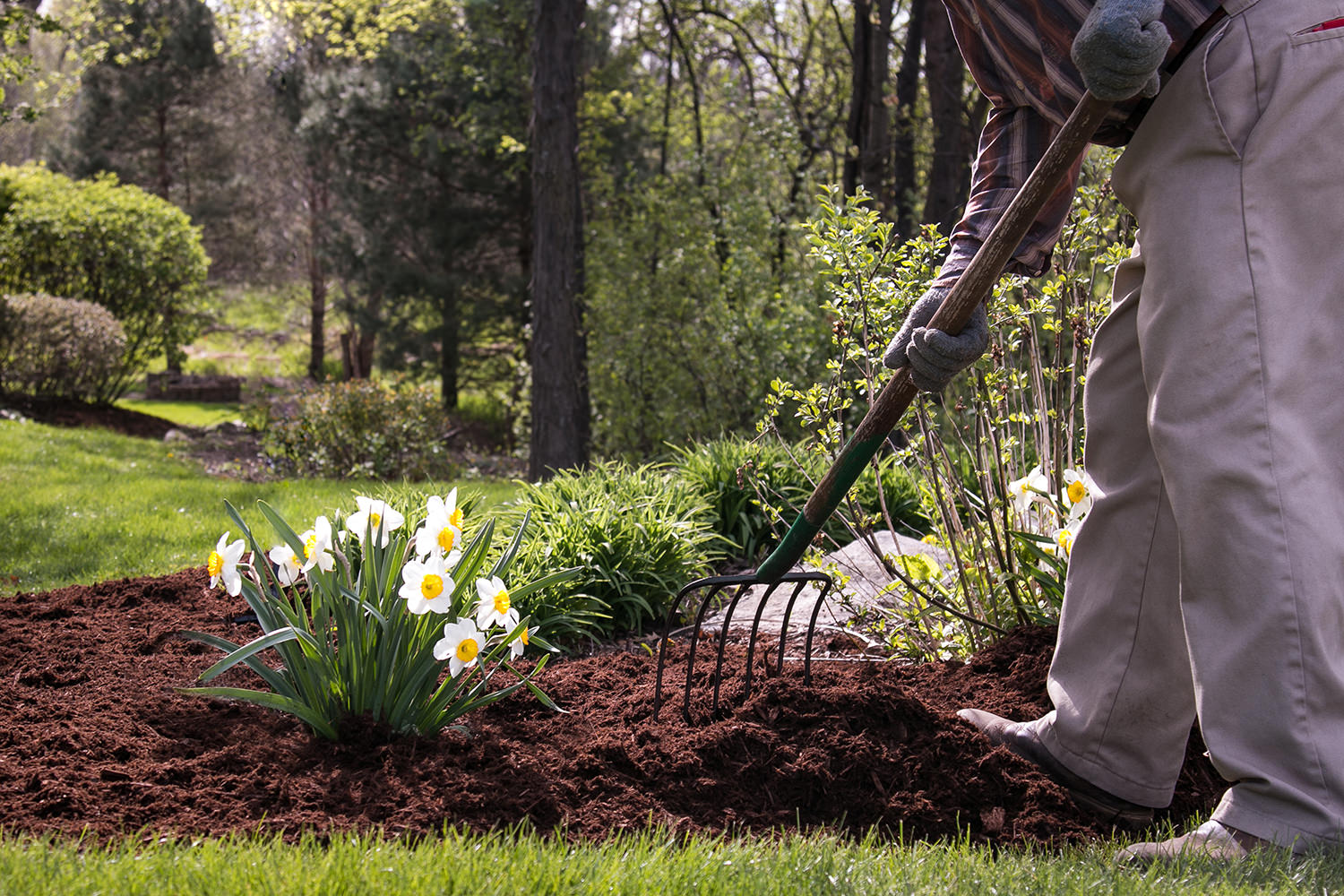 Backyard Clean Up Spring Clean Up Service Crystal Lake Il Elite Lawn Care
