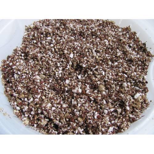 Medium Crop Of Perlite Vs Vermiculite