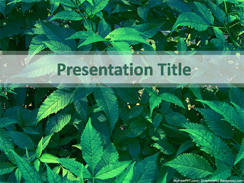 Free Leaves PowerPoint Template - Download Free PowerPoint PPT