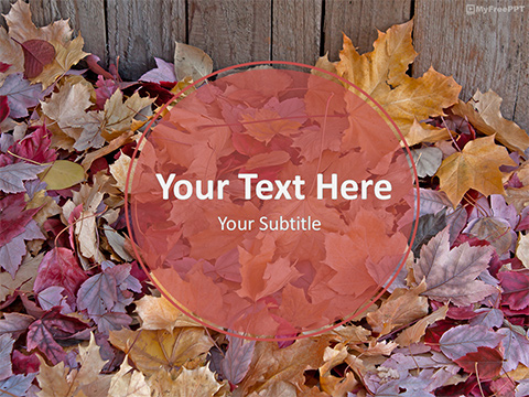 Free Fall Leaves PowerPoint Templates - MyFreePPT