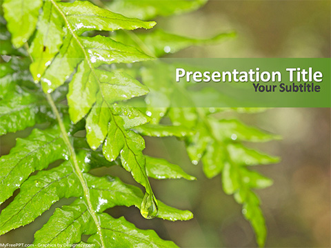 Free Fresh Leaves PowerPoint Template - Download Free PowerPoint PPT