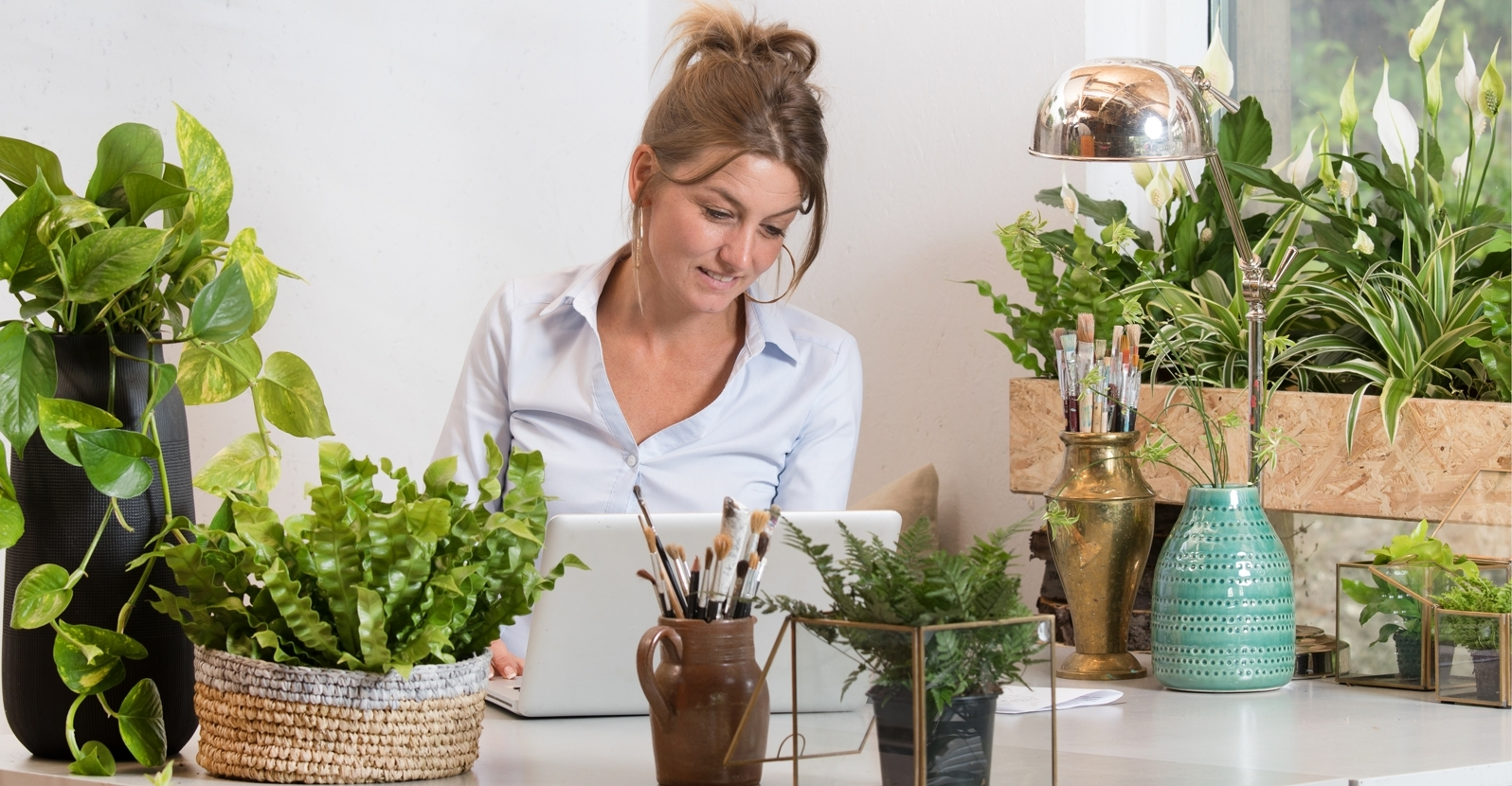 Indoor Plants For The Office 10 Indoor Plants For A Healthier Office My Garden Life