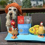 Low Calorie Tasty Treats For Your Dog | #Chewy.com