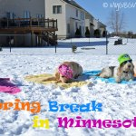 Spring Break At Emma's B & B