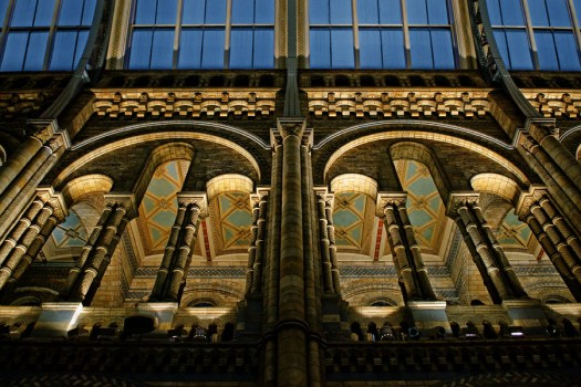natural history museum non-hdr