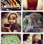 Camera Phone Friday: Callaway Gardens' Summer Family Adventure Edition