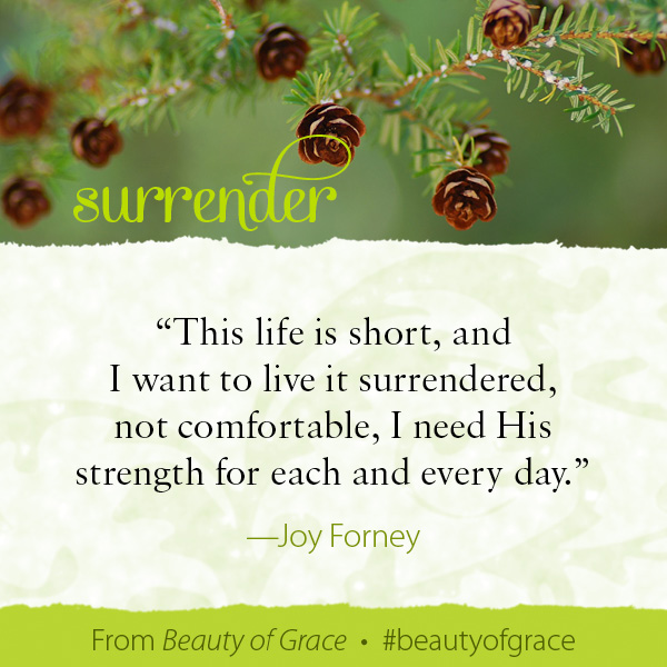 Joy Forney The Beauty of Grace #beautyofgrace