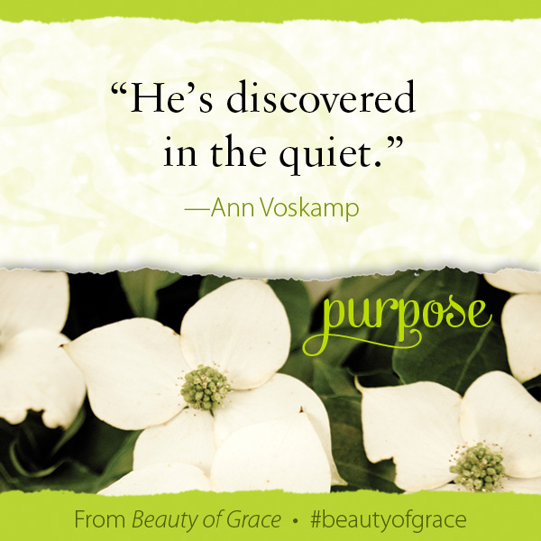 Ann Voskamp The Beauty of Grace #beautyofgrace
