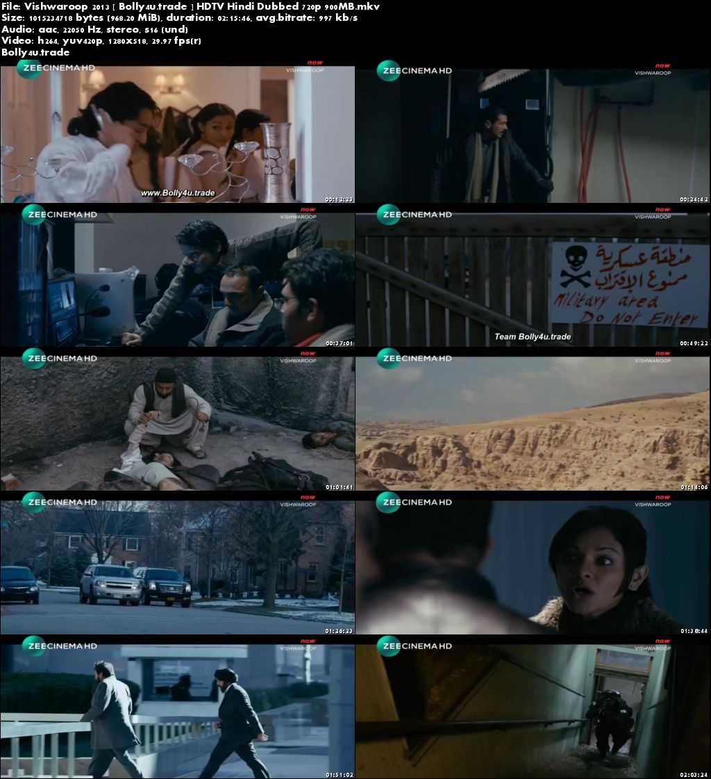 Vishwaroopam 2013 HDTV 900Mb Full Hindi Dubbed Movie Download 720p
