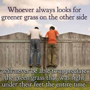 appreciate the green grass under your feet