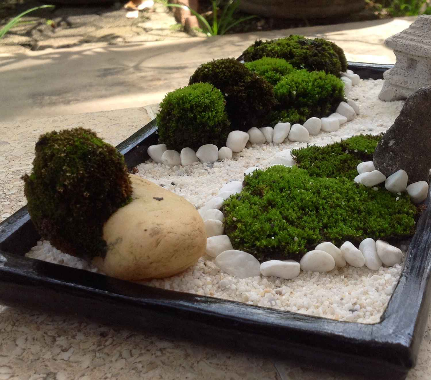 Office Zen Garden Mini Zen Garden Ideas To Bring Tranquility In Your Home