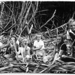 Kinderschar in einem Zuckerrohrfeld von Casa Grande