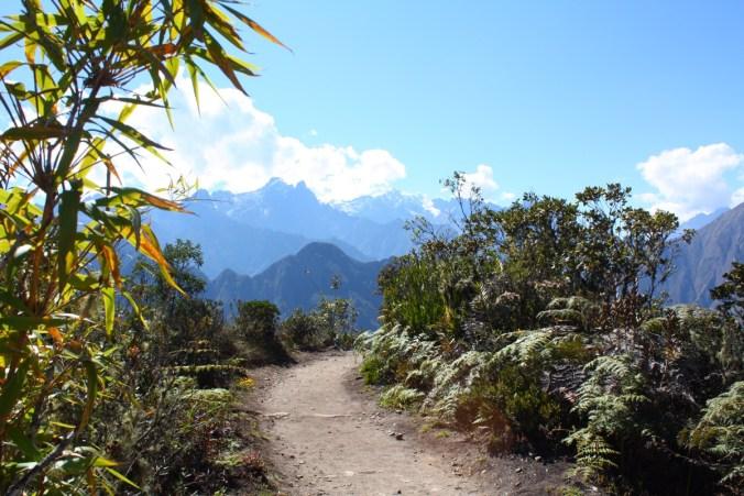 Weg auf dem Gipfel des Montaña, Machu Picchu