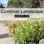 commonlandscapemistakes-copy
