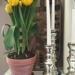 Whitewashed Flower Pot for Spring