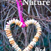 DIY Bird Feeder Craft For Kids