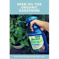 Small Crop Of Garden Safe Neem Oil
