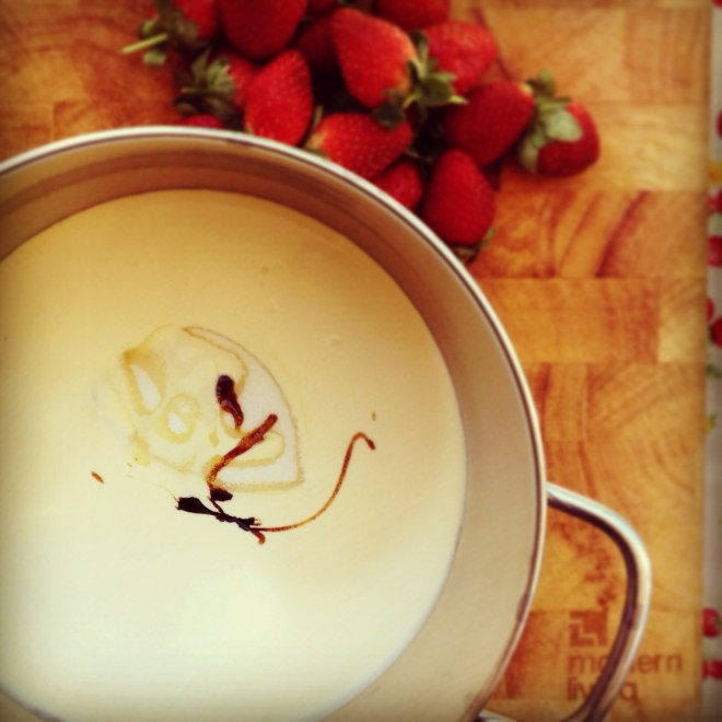 yoghurt panna cotta with fresh strawberries