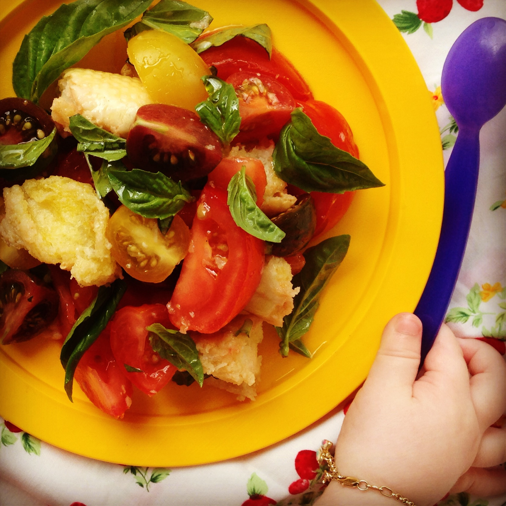 italian tomato & bread salad - my lovely little lunch box