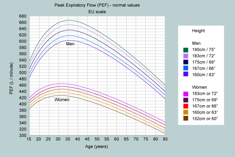 What is a normal peak flow? My Lungs My Life