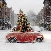 How to Fit the Tree in the Car