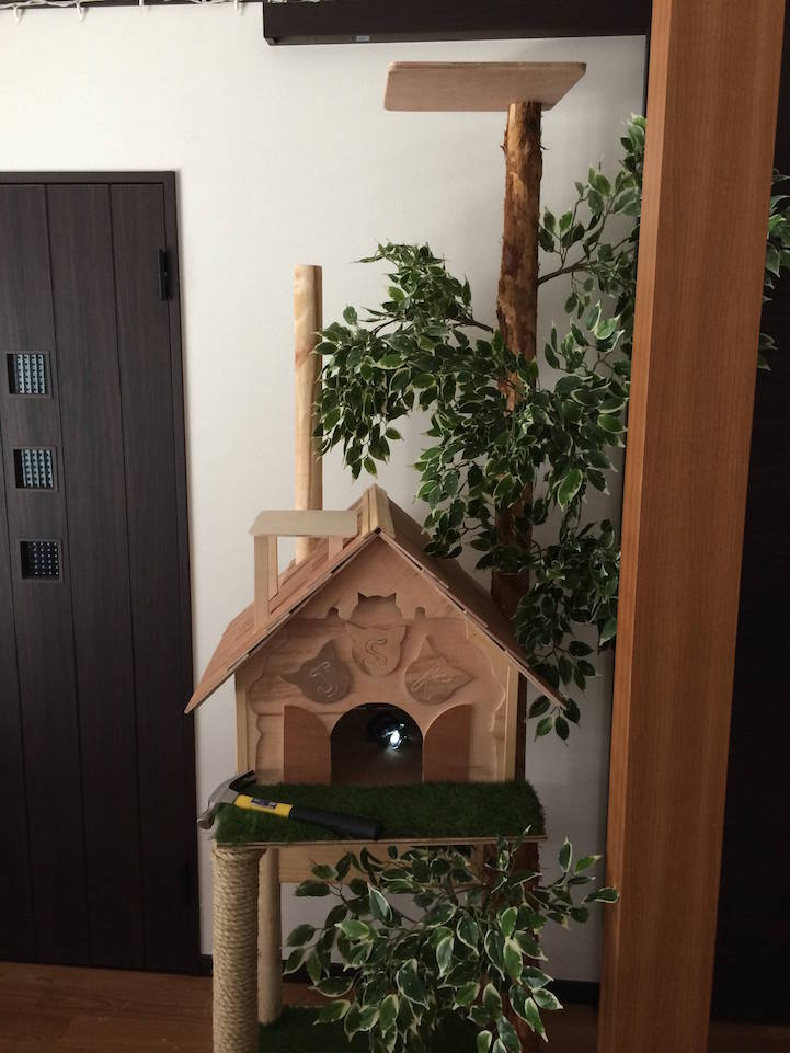 Store Exterieur Youtube Diy Cat Tree Offers Alternative To Conventional Scratching