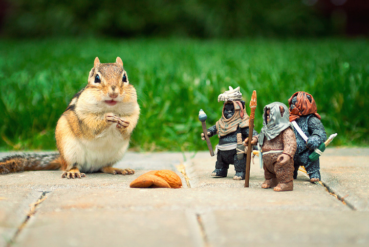 Cute Lego Stormtrooper Wallpaper Cute Chipmunks Playfully Interact With Quot Star Wars Quot Toys