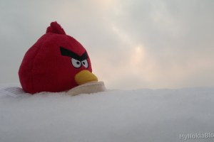 Gallery: The Real Angry Birds Seasons – Angry Bird Plush Toy out in the snow (by Nokia N8)