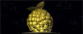 Goldene Himbeere