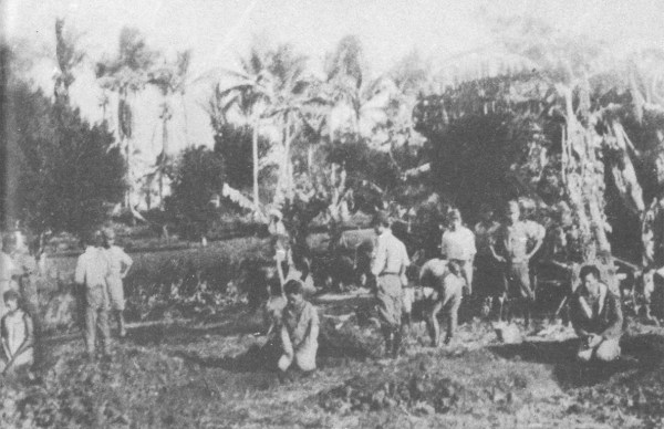 Beheadings in the Philippine countryside