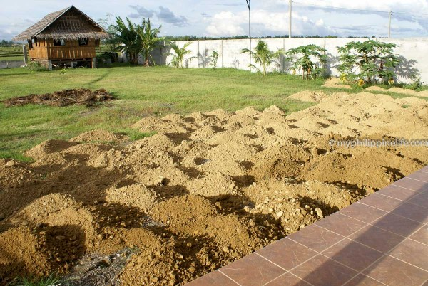 """Poor quality """"topsoil"""".  It's in little pile because it was moved by wheelbarrow."""