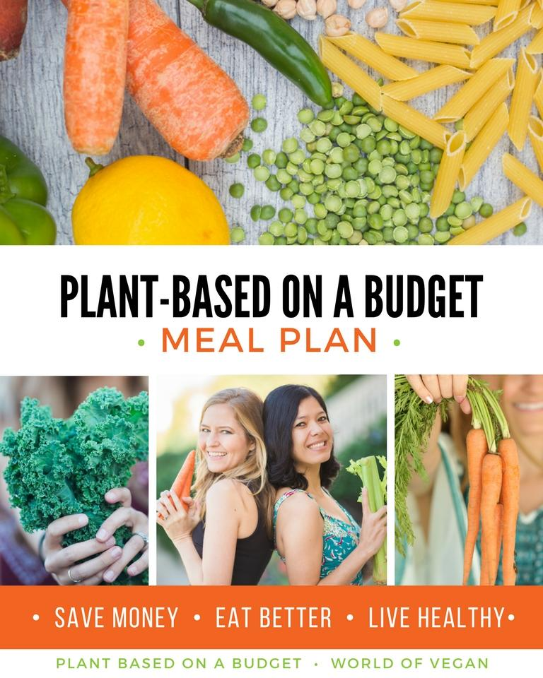 Plant-Based on a Budget Meal Plan - My Plant-Based Family - budget plans for families