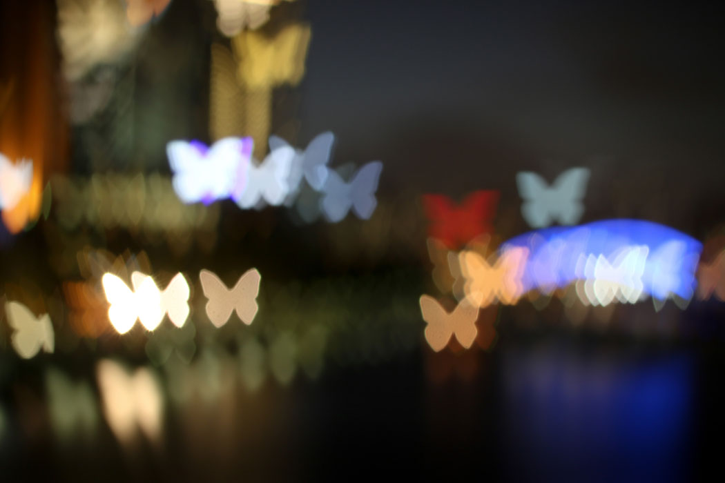 Out of Focus - Experimenting with Bokeh Photography in Melbourne