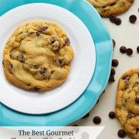The Best Gourmet Chocolate Chip Cookies