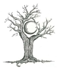 tree-craddling-crescent-moon-karen-sirard