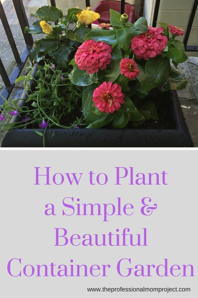 How to Plant a Simple & Beautiful Container Garden