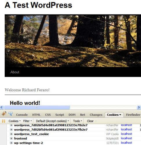 A Test WordPress homepage showing the customer's name in the welcome message