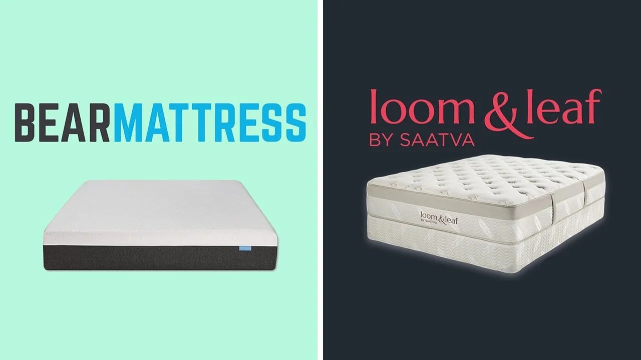 Helix Vs Loom And Leaf Bear Mattress Vs Loom Leaf Comparison Review