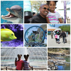 Sea World 2014