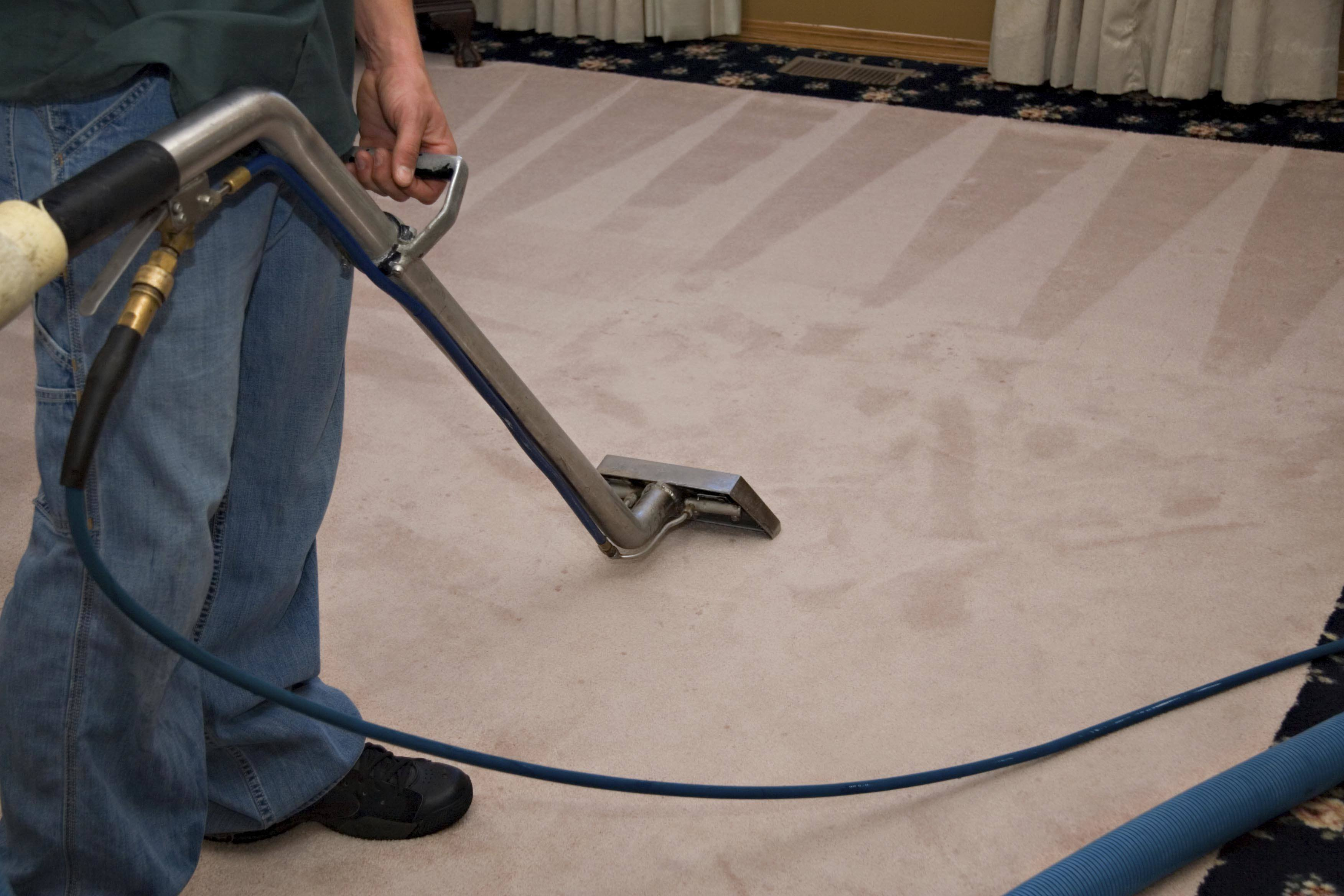 Home Carpet Cleaning Camarillo Carpet Cleaning Steam Green Carpet Cleaning